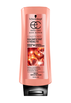 Thumbnail – Magnificent Strength Conditioner